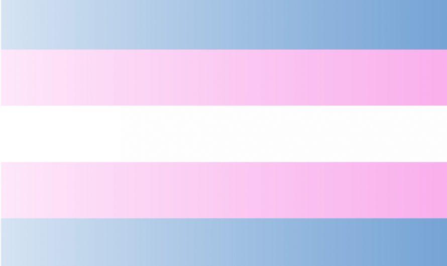 День трансгендерного флага